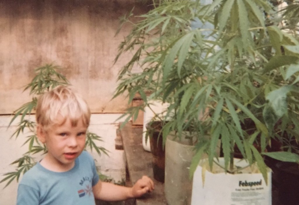 Small Child with Cannabis